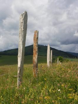 Скифская долина. Чарышский район