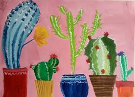 Семейство кактусов