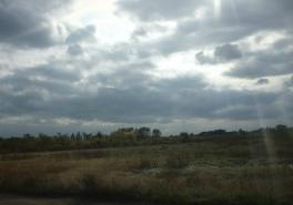Грустной тенью бродит осень