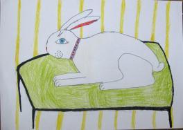 Мой белый кролик