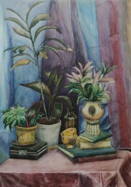 Натюрморт с домашними растениями
