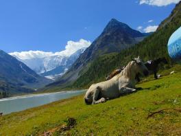 подножье горы Белуха