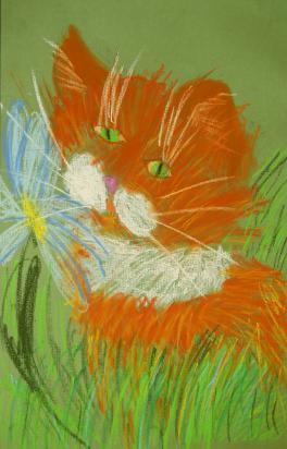 Рыжий кот.