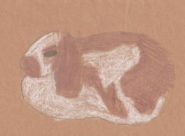 Кролик. Набросок