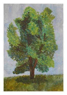 Этюд дерева